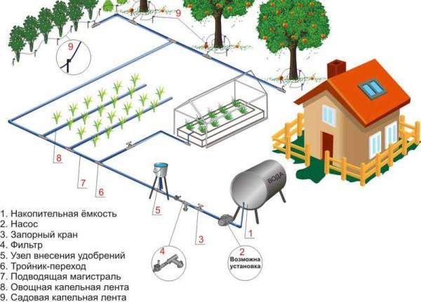 Система полива на даче из емкости