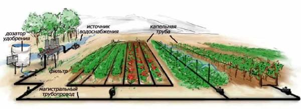 Автоматический полив огорода своими руками можно собрать из комплектующих или купить готовые наборы для полива
