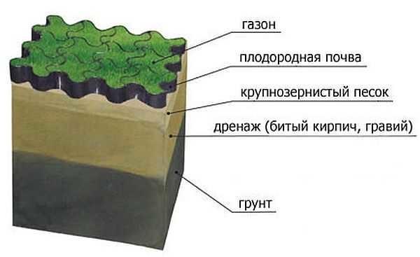 На заболоченных почвах для того чтобы вырастить красивый газон необходимо создать нормальные условия для отведения воды