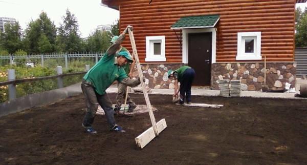 Чтобы сделать красивый газон, необходимо тщательно выровнять участок