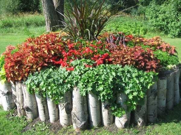 Это не совсем дерево, конечно, но идея понятна. Такие садовые цветники хороши для тенелюбивых растений
