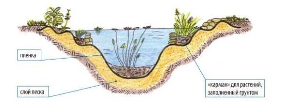 Пруд своими руками: с пленкой, чашей, мини-пруды из покрышки, растения