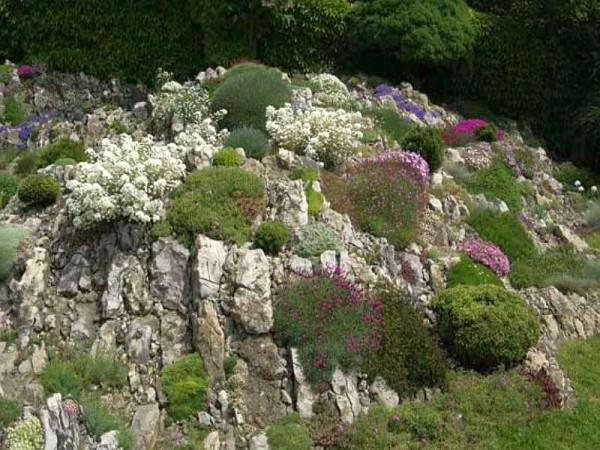 Чешская скалка - яркий пример слоистой альпийской горки