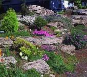Камни в виде плит хорошо смотрятся на невысоких горках