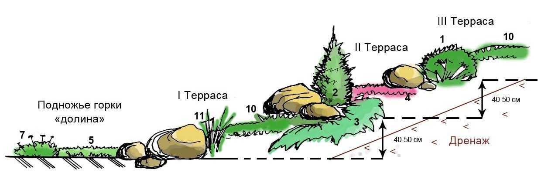 Как сделать альпийскую горку пошаговая инструкция