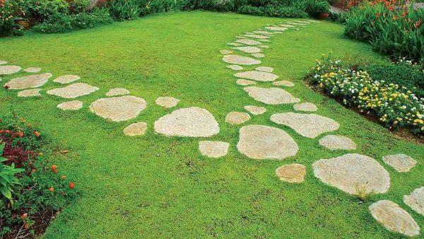 Садовые дорожки своими руками из самодельной формы