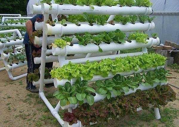 Грядка для зелени из пластиковых труб
