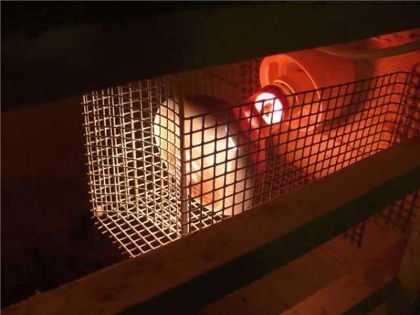 ИК-лампа-обогреватель в сетчатом кожухе