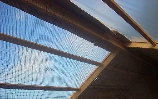 Это вид изнутри курятника на потолок