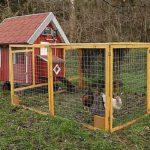 Это прямо домик для кур, а не сарай