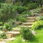 На небольшом склоне достаточно может быть высадки растений, если вас, Конечно устраивает сад на склоне
