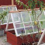 Две рамы, составленные домиком: растения прикрыты от сквозняков, а боковины можно закрыть пленкой