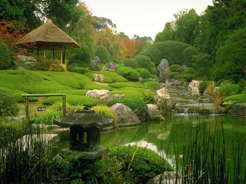 Оформление садового участка своими руками летом фото фото 772