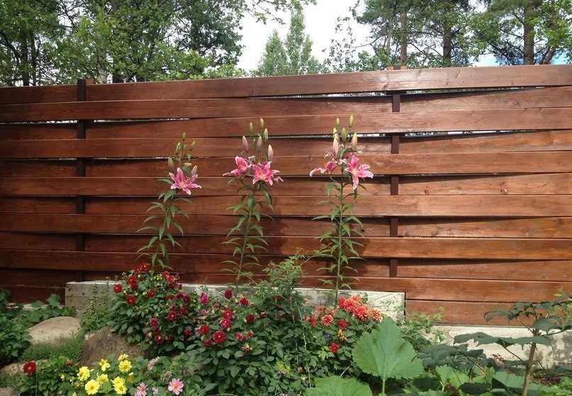 Как сделать плетёный забор из досок своими  657
