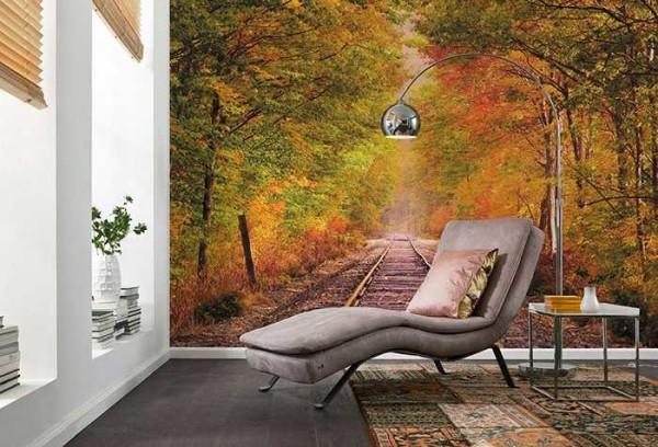Осенний лес способствует расслаблению