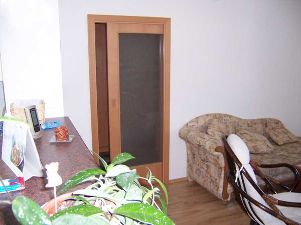 Кассетная раздвижная межкомнатная дверь: полотно прячется в стенную нишу