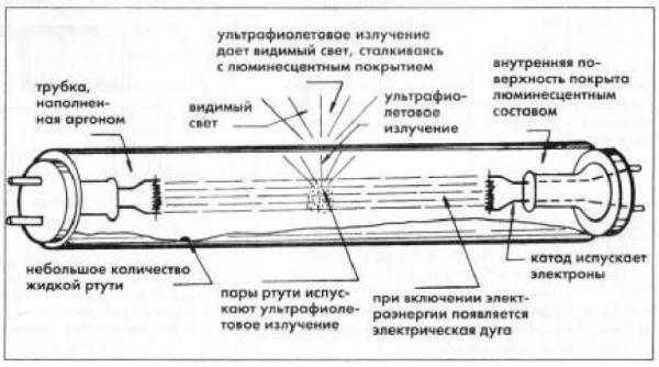 Принципиальное устройство люминесцентной лампы дневного света
