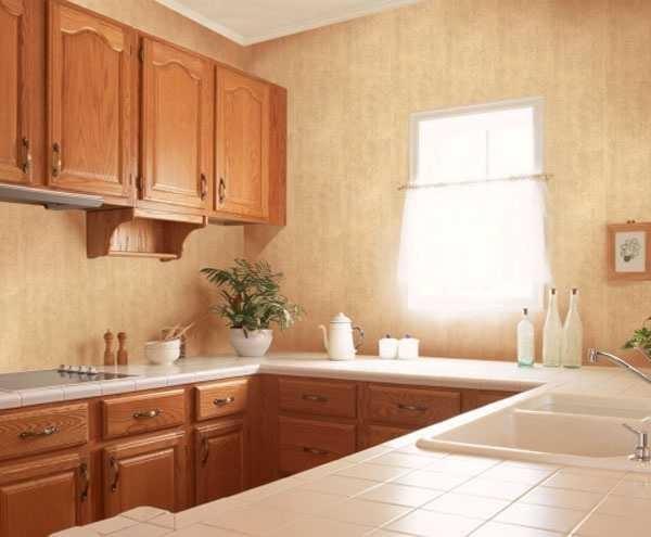 Пластиковые стеновые панели - эконом вариант для ремонта кухни в хрущевке и не только
