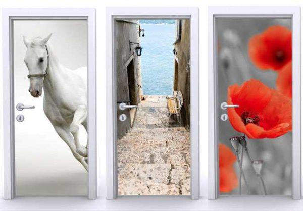 Всего три варианта двери с фотообоями