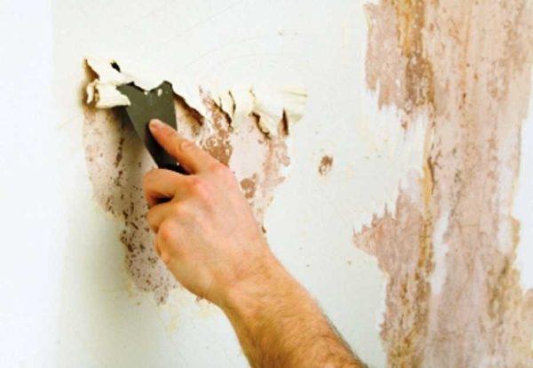 Счищают старую краску со стен чаще всего шпателем