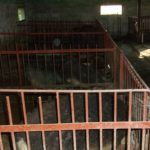 Ограда станка для свиней сделана из прутьев арматуры и полос стали