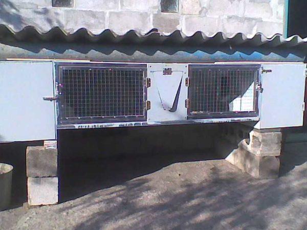 Крышу клетки для кроликов (летнего крольчатника) можно сделать из шифера