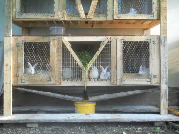Поддон в клетке для кроликов может быть общим на несколько клеток