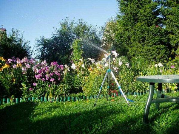 Для полива огорода требуется грамотно подбирать насос