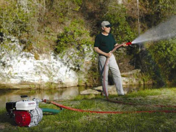 Для полива огорода из речки или пруда подходят не все насосы