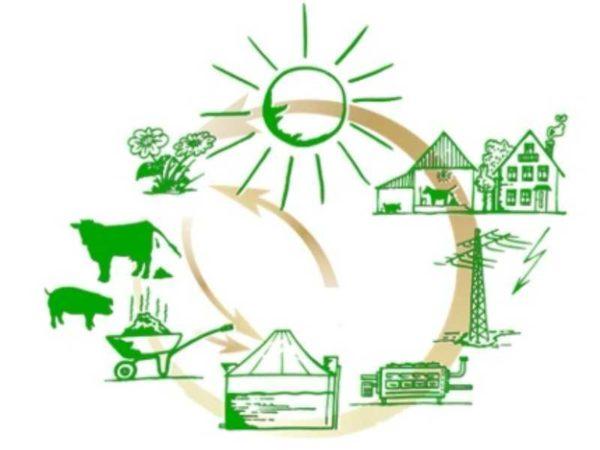 Из навоза тоже можно получать энергию, только не в чистом виде, а в виде газа