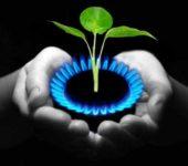 Постройка биогазовой установки - способ самостоятельного обеспечения энергоресурсами
