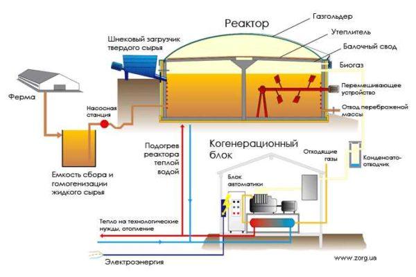 Организация цикла переработки навоза и растительных отходов в биогаз