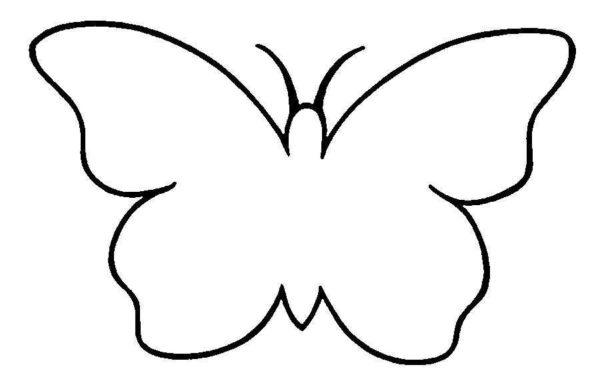 Бабочки для декора 78