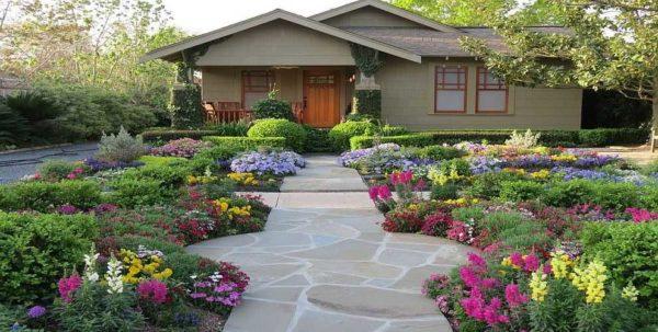 Подобрать цветы для дачи чтобы они цвели весь сезон - это искусство