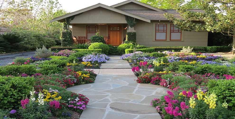 Сажать цветы на даче фото и название 516