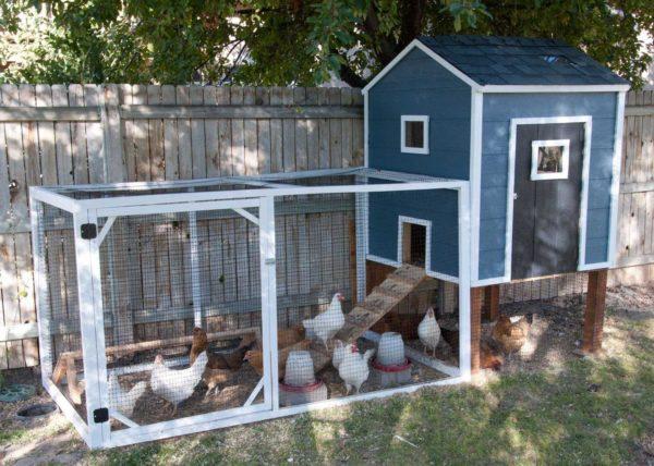 Красивый курятник на 10-20 кур можно не прятать на заднем дворе