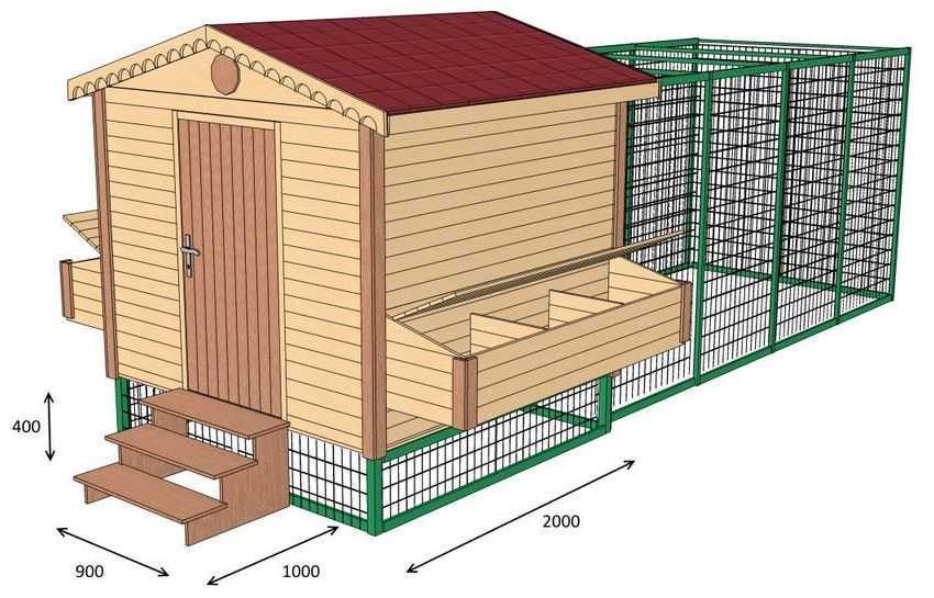 Как построить курятник на 30 кур