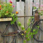 """Украсить забор, приколотив к нему старый велосипед... и высадить """"В велосипед"""" цветы"""
