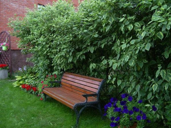 В уютных уголках расставить скамейки