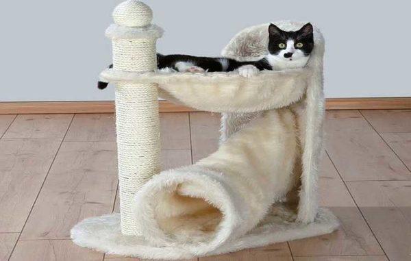 """Комбинация гамака и трубы — один из """"лайт"""" вариантов уголка для кошки"""