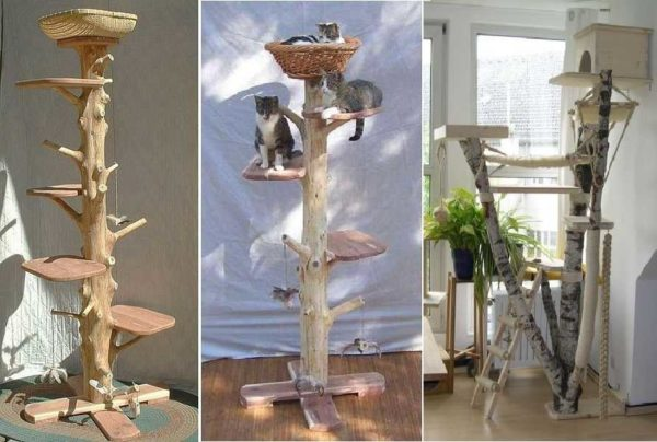 Домик для кошки можно сделать и из древесного ствола