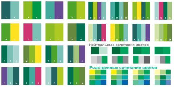 Несколько вариантов сочетаемых с зеленым цветов