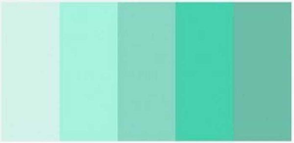 Разные оттенки мятного цвета (минт)