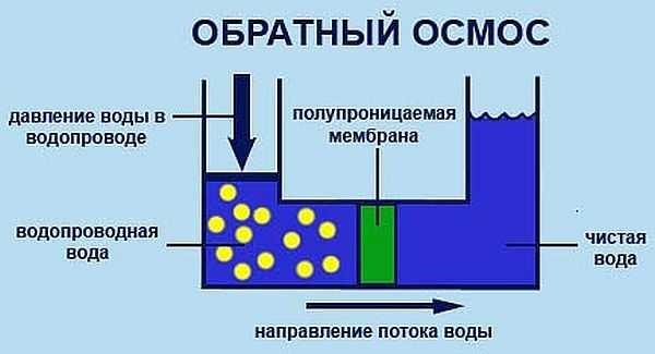 Принцип работы системы обратного осмоса: очищает воду специальная мембрана