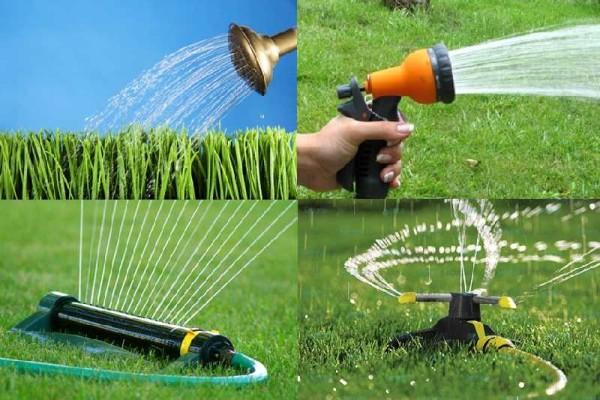 Устройства для полива газона, которые можно купить в магазине