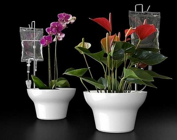 Постоянное увлажнение ваших цветов на балконе{q} Легко!