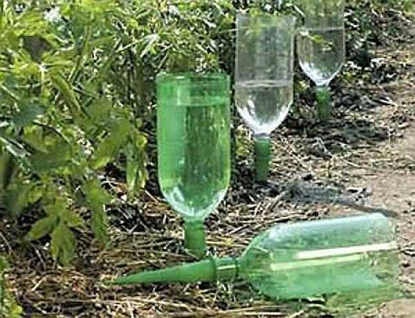 Как сделать капельный полив на даче из бутылок