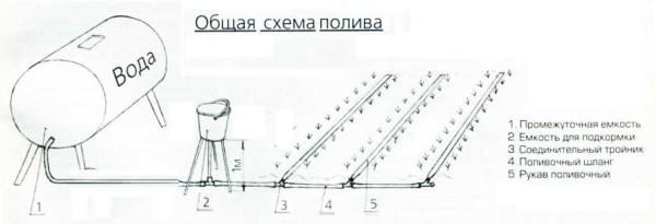 Схема капельного полива самотечного типа