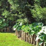 Половинки поленьев также могут сложить оградой для приподнятого цветника