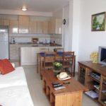 На фото смежная кухня с гостиной размером 17 квадратов